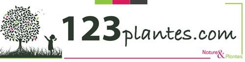 Le site internet 123plantes.com