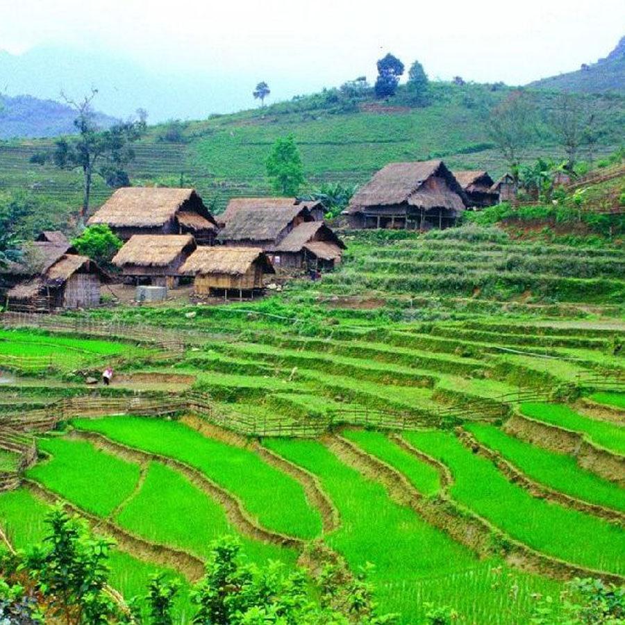 Un site web pour programmer son voyage au Vietnam