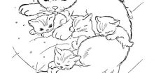 Image de chaton a imprimer