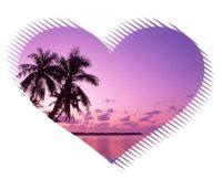 image jolie coeur