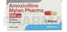 Amoxicilline, comment bien doser ?