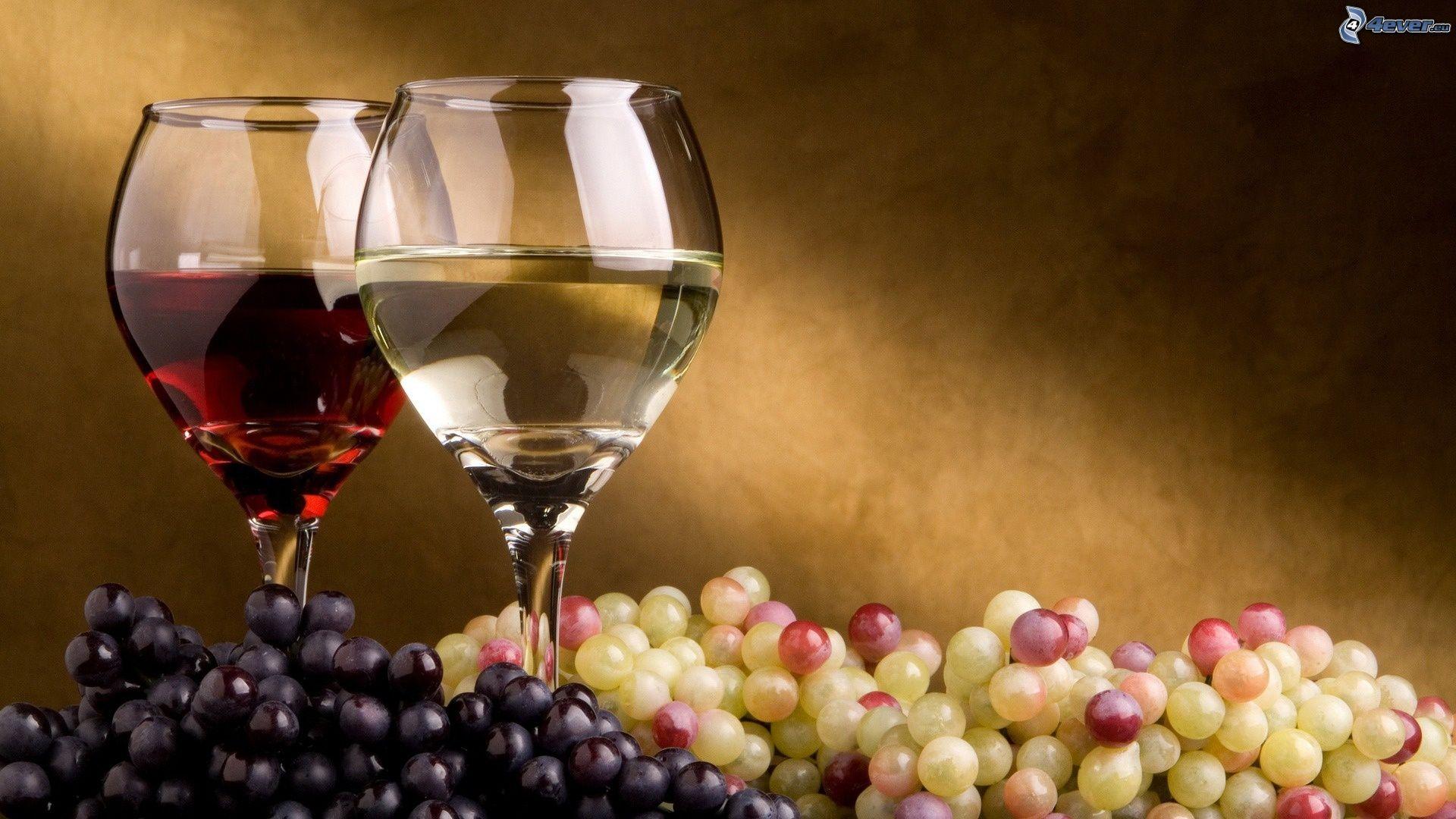 Top vin, bien plus à l'aise sur le sujet