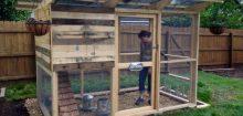 Comment construire un poulailler avec des palettes